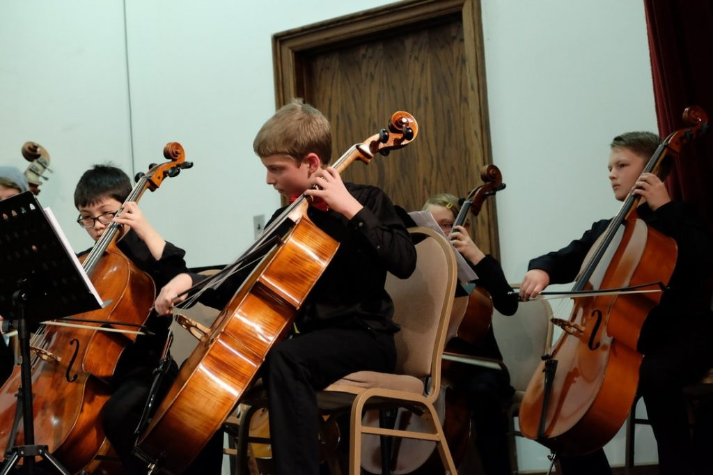 sunflower chamber orchestra